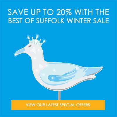 homepage-special-offer-banner-winter-sale