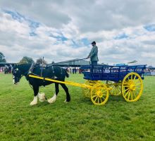 Horse and Cart at The Suffolk Show