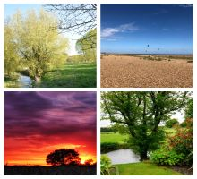 Blog title A Suffolk for All Seasons