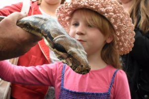 Spend Easter in Suffolk at the Framlingham Country Show