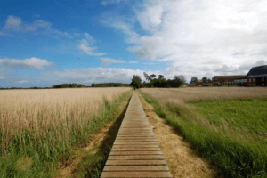 Summer in Suffolk is ideal for Walking