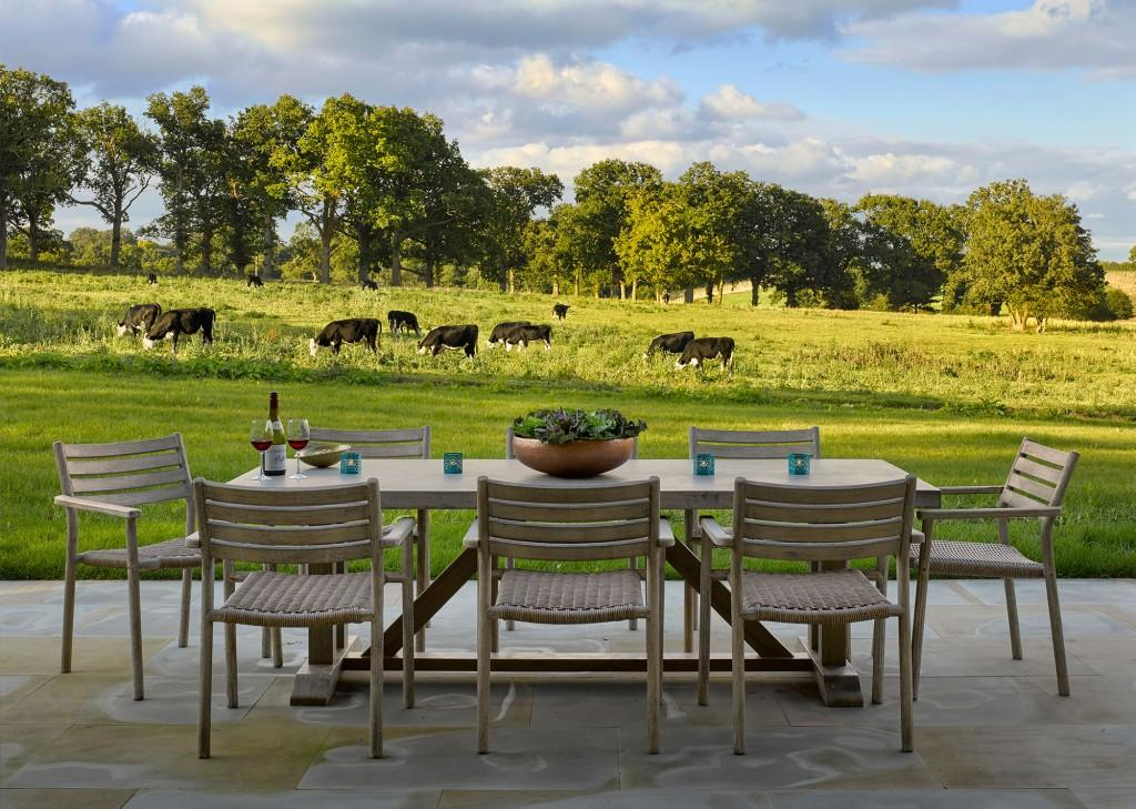 Terrace-with-cows-beyond-ha-ha---the-Cartshed---Wilderness-Reserve